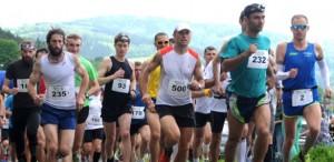 półmaraton Jedlina
