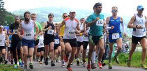półmaraton Jedlina 2015